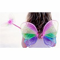 Fairy Snazzy Sparkle Wings and Wand