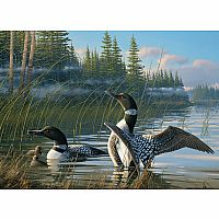 Common Loons 1000pc Puzzle